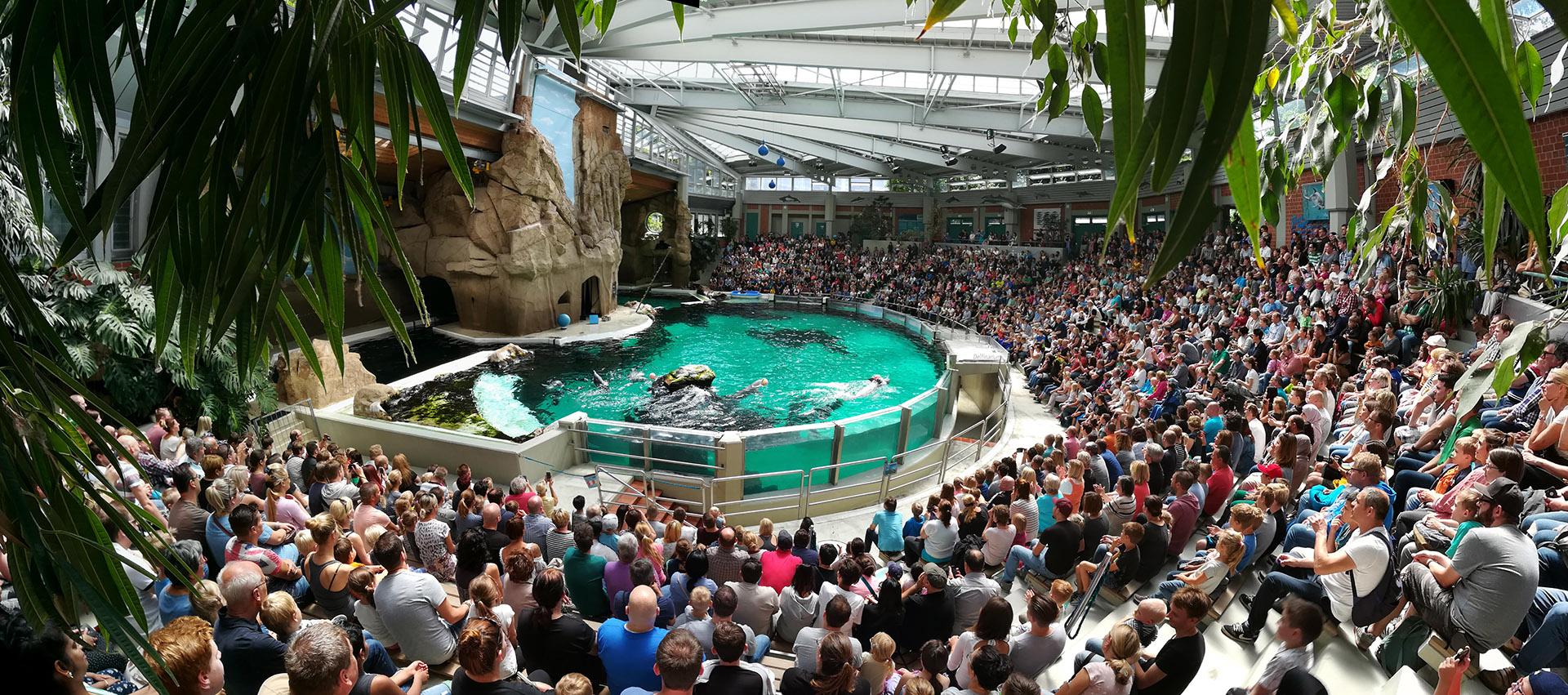 Nur der Delphine wegen - alleine in dieser Vorstellung saßen 1400 Besucher